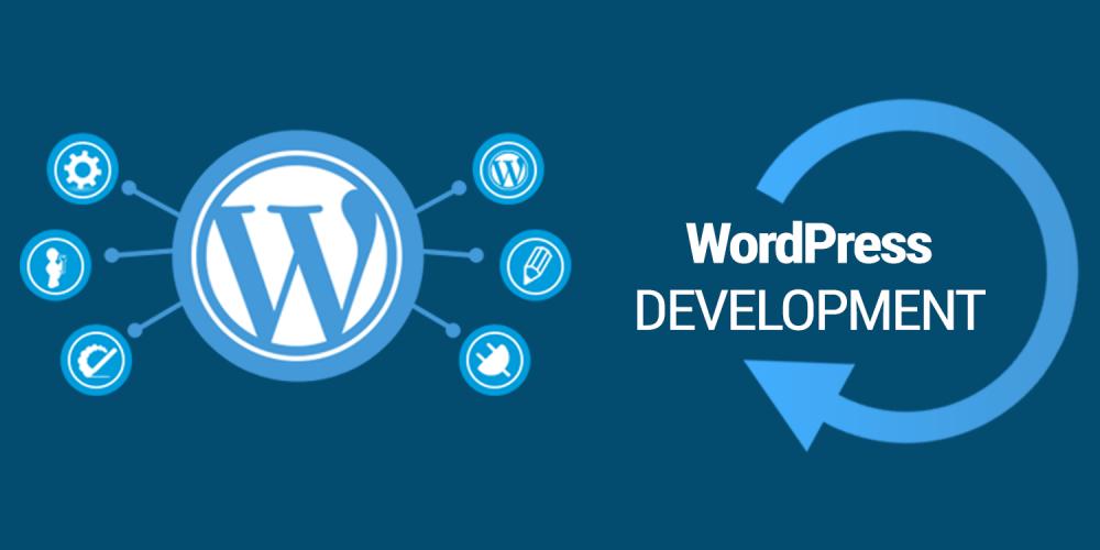 wordpress website design in kannur